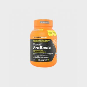 ProBasic